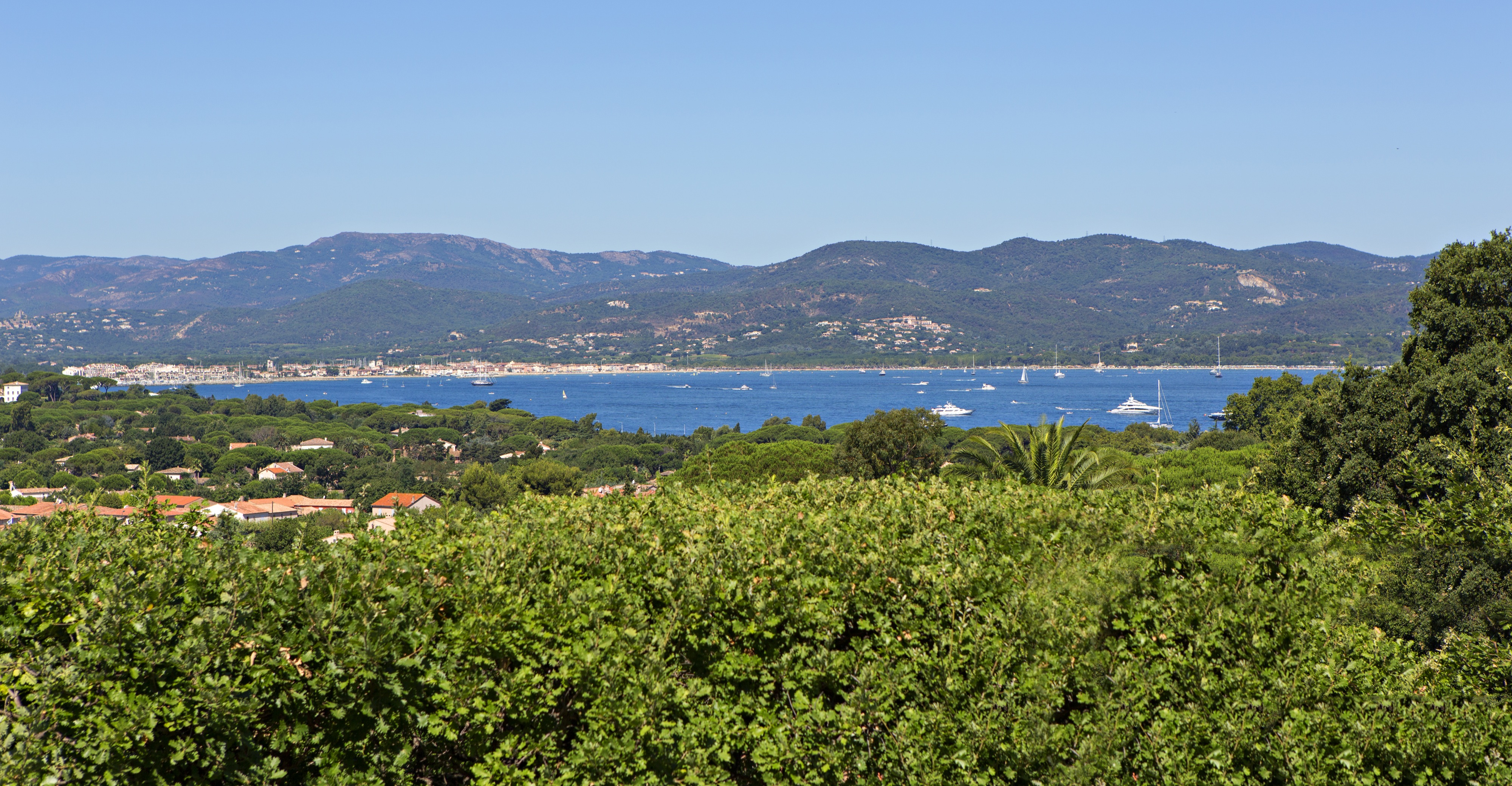 Sea views and trees taken from a property in Les Carles Saint Tropez