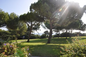 The property market in Antibes