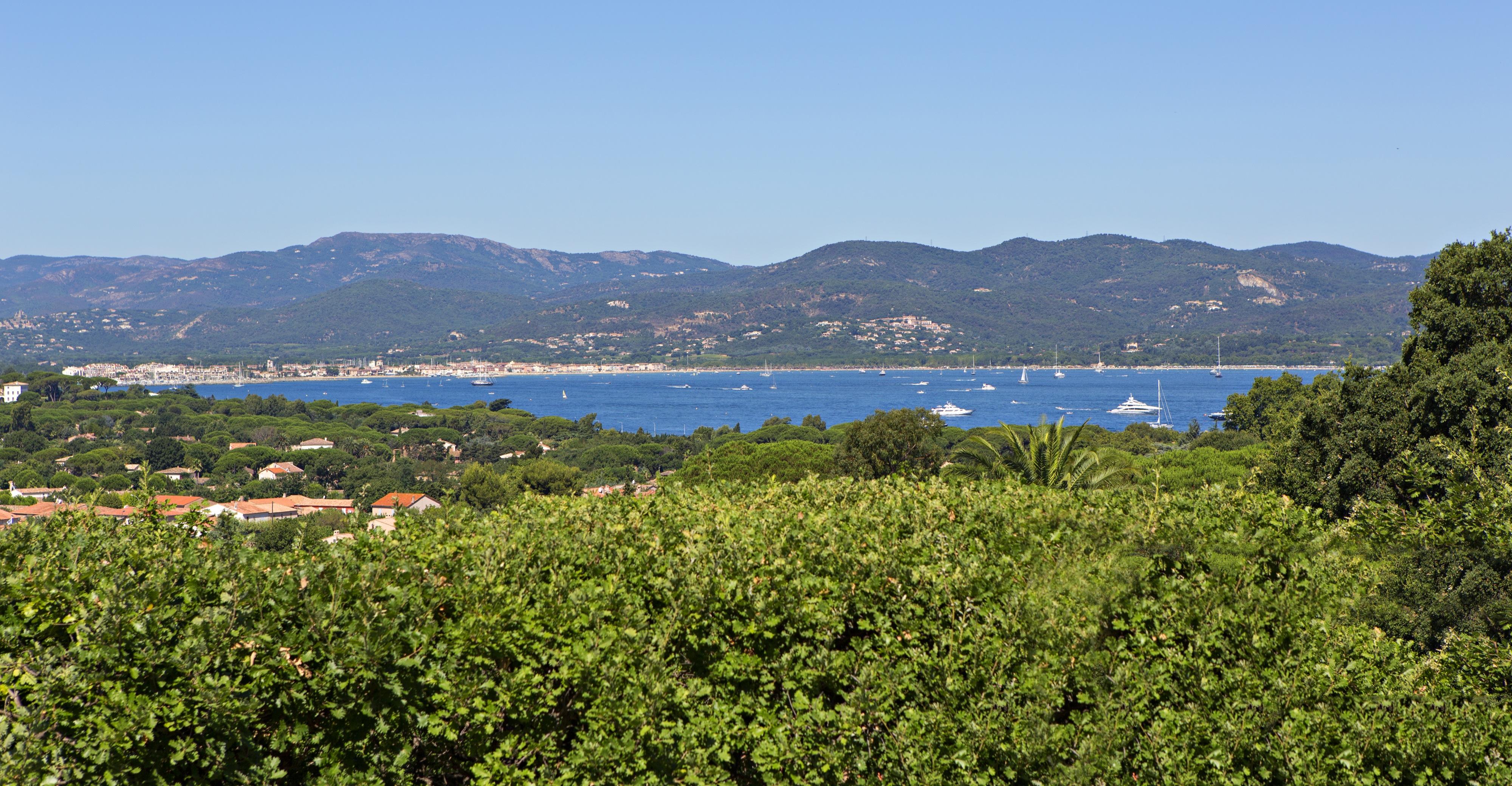 Saint Tropez villas. Affordable?