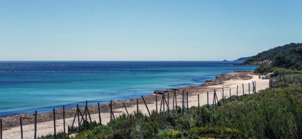 Le Parc de la Moutte – Saint Tropez